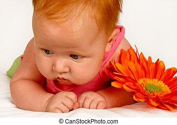 bebê, laranja