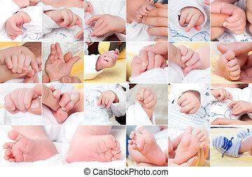 bebê, novo, composição, jogo, nascido