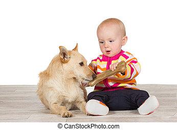 bebê, pequeno, osso, cão, oferecendo