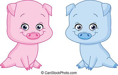 bebê, porcos