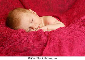 bebê recém-nascido, cobertor, vermelho, dormir