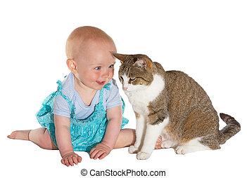 bebê, sorrindo, gato