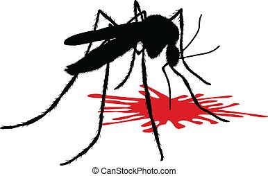 bebidas, sangre, mosquito