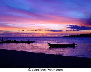 bedöva, fijian, solnedgång