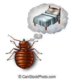 Bed Bug Dreaming