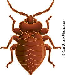 Bedbug - Vector image of simbol of  brown bedbug