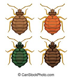 Bedbug Set on White Background. Vector