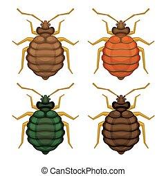 Bedbug Set on White Background. Vector