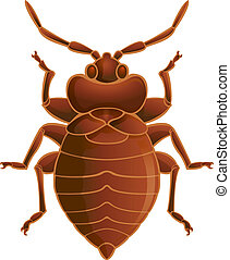 Bedbug - Vector image of simbol of brown bedbug