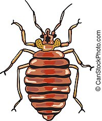 BedBugSketch.eps - Bed Bug Sketch