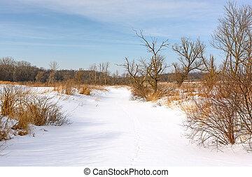 bedeckt, prärie, flüßchen, schnee
