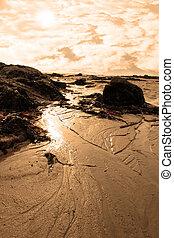 bedeckt, sandstrand, sonnenuntergang, tang, steinen