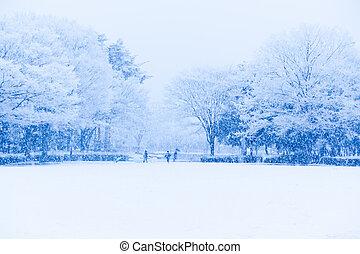 bedekt, scène, sneeuw, sneeuw