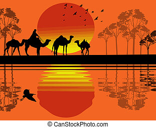 Bedouin camel caravan in wild africa landscape near water on...