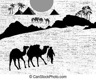 Bedouin camel caravan in wild afric