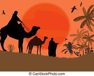 Bedouin camel caravan in wild africa landscape, vector...