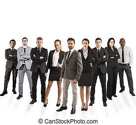bedrijf, team