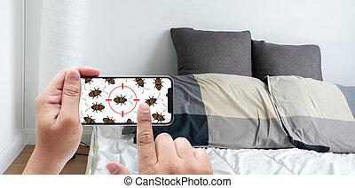 bedroom., détecter, vérification, inhabituel, femmes, choses, bogues, lit
