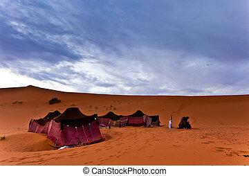 beduine, sahara wüste, zelte