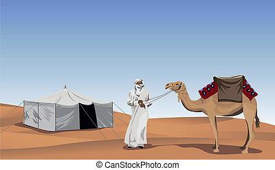 beduino, cammello
