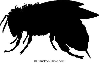 bee black vector silhouette