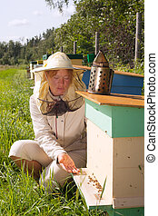 Bee keeper at hive.