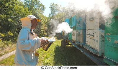 bee-maker beekeeper man lifestyle working of a smoke pipe...