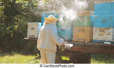 bee-maker beekeeper man working of a smoke pipe beeper...