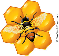 Bee on a part of honeycomb, isolated on white. Also can be...