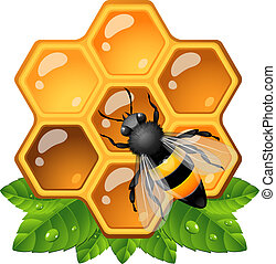 Bee on honeycomb. EPS 10, AI, JPEG