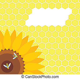 Bee on sunflower and honeycomb vector
