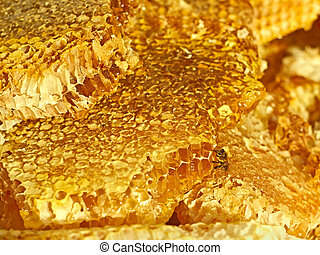 Bee on the honeycomb surface - Broken honeycomb with honey, ...