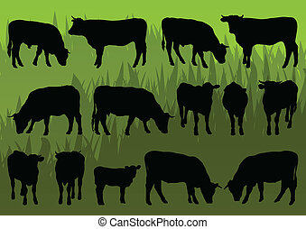 Beef cattle and cow detailed silhouettes illustration