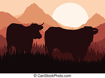 Beef cattle in wild nature landscape