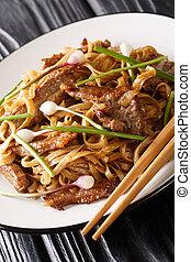 Beef Chow Fun Noodles (Pan-Fried Ho Fun) Cantonese dish...