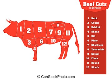 Beef cuts infographic set of meat parts, vector