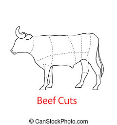 Scheme of the template - beef cuts.