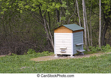Beehive on a wood glade - Beehive on a spring wood glade