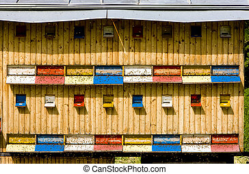 beehive, Slovakia
