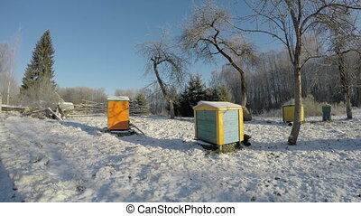 Beehives in winter, time lapse 4K