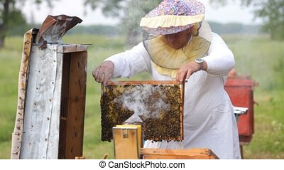 Beekeeper and bees in the hive
