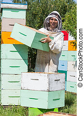 Beekeeper Carrying Honeycomb Box At Apiary