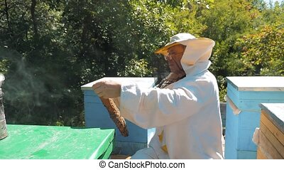 beekeeper holding a honeycomb full of bees lifestyle....
