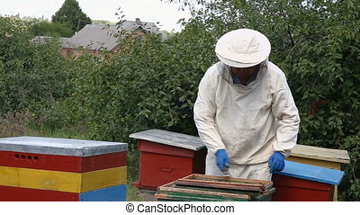 beekeeper inspecting honeycomb - beekeeper in protective...
