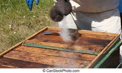 beekeeper inspecting honeycomb - closeup beekeeper hands in...