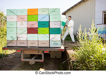 Beekeeper Loading Honeycomb Crates In Truck