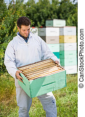 Beekeeper Looking At Honeycomb Crate