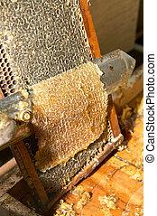 Beekeeper scraping off honeycomb on bee farm