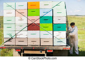 Beekeeper Standing By Truck Full Of Honeycomb Crates