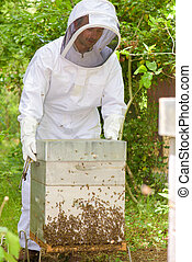 Beekeeper with hive